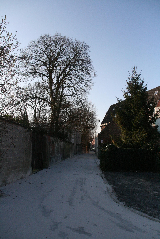27dec08 11u34 Antwerpsevoetweg