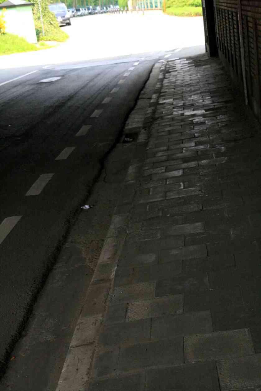 01mei09, 14u48, Vennestraat / Beukenlaan
