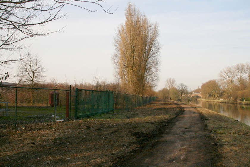 18feb13, 16u06, Hamerlandtragel
