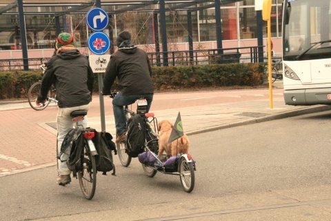 10apr13, 17u41, Graaf Van Vlaanderenplein