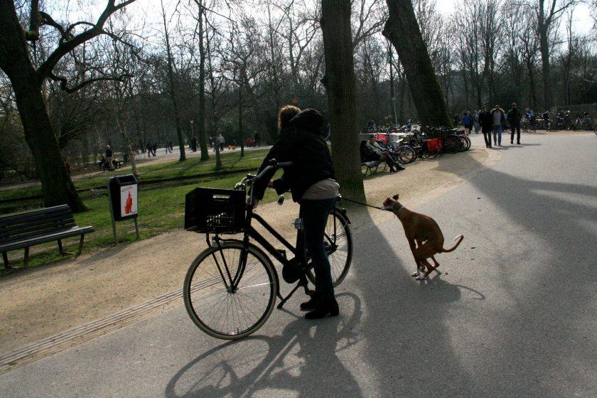 08maa14, 13u02, Amsterdam