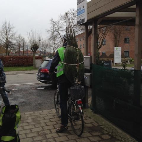Poelstraat - Merelbeke 13 Dec 2014 11:35