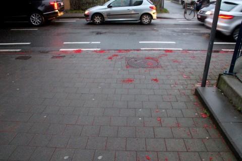 05feb16, Denderlaan / Forelstraat
