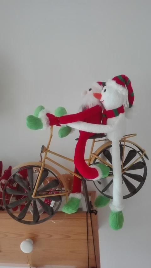 Kerstman en zijn vrouw